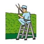 基本パックの管理内容04:庭木のチェック