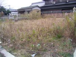 オプション例:庭の除草Before